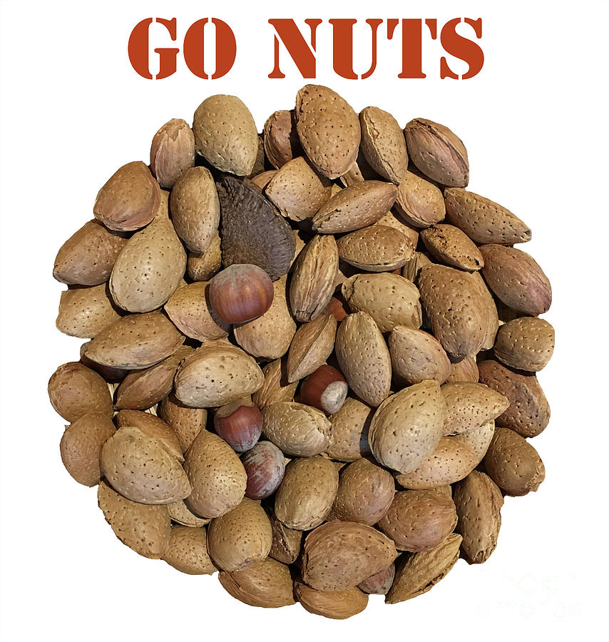 Eat local, healthy and gourmet with Go Nuts